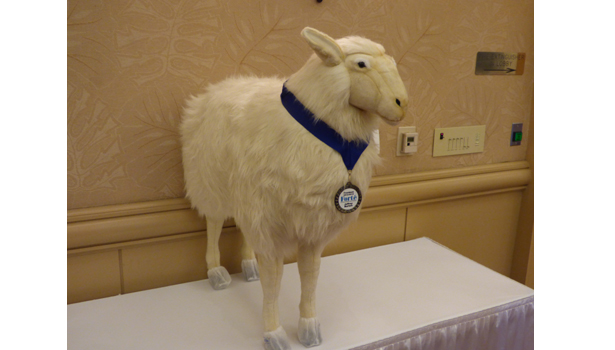 This stuffed animal sheep was presented to Forte Immediate Past President Jeff Burton.