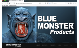 bluemonster website