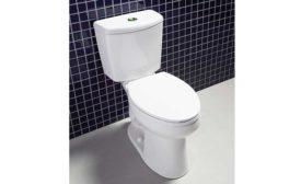 Niagara Dual Flush Toilet