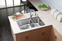 Elkay double-bowl sink