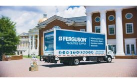 Ferguson Dogwood